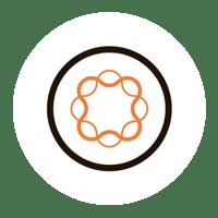 Connettore THRON per Adobe EM